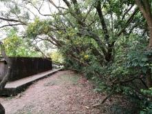 Pinewood Battery